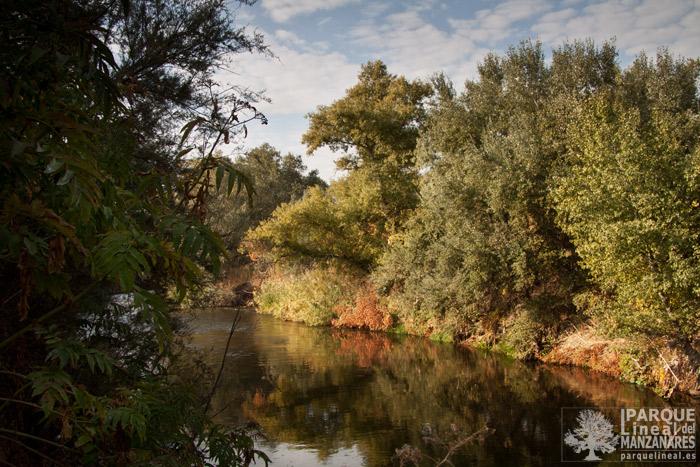 rio-manzanares